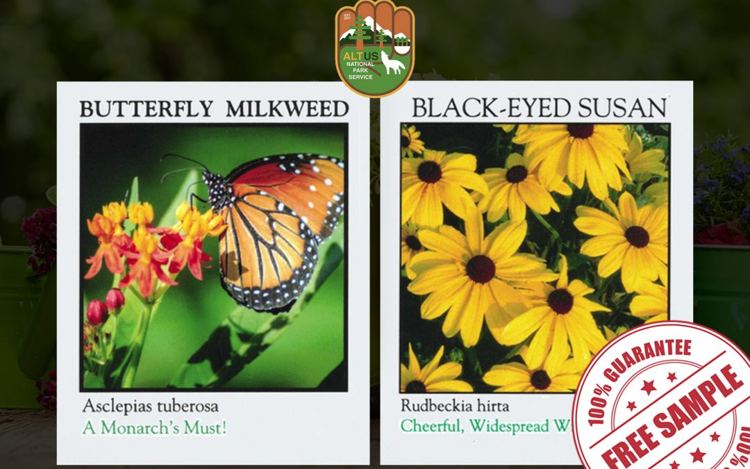 FREE SAMPLE OF POLLINATOR PLANT SEEDS