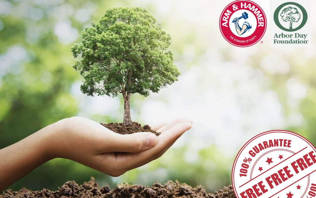FREE TREE SEEDLING FROM ARM & HAMMER