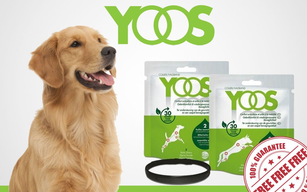 FREE COLLAR FROM YOOS