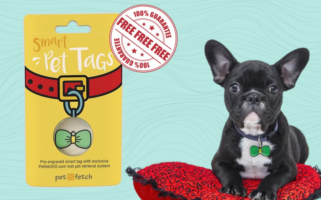 FREE PET FETCH ID FOR YOUR PETS